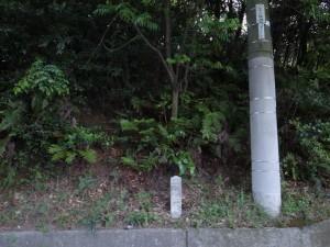 20140528大野村⇔宮内村  (2)