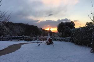 20170114 雪の朝 (1)