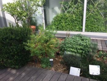 ガーデン屋外