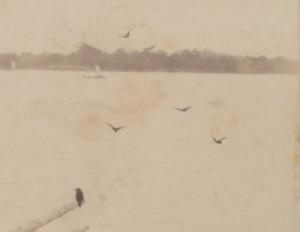 絵画及写真集より 海の見える杜美術館