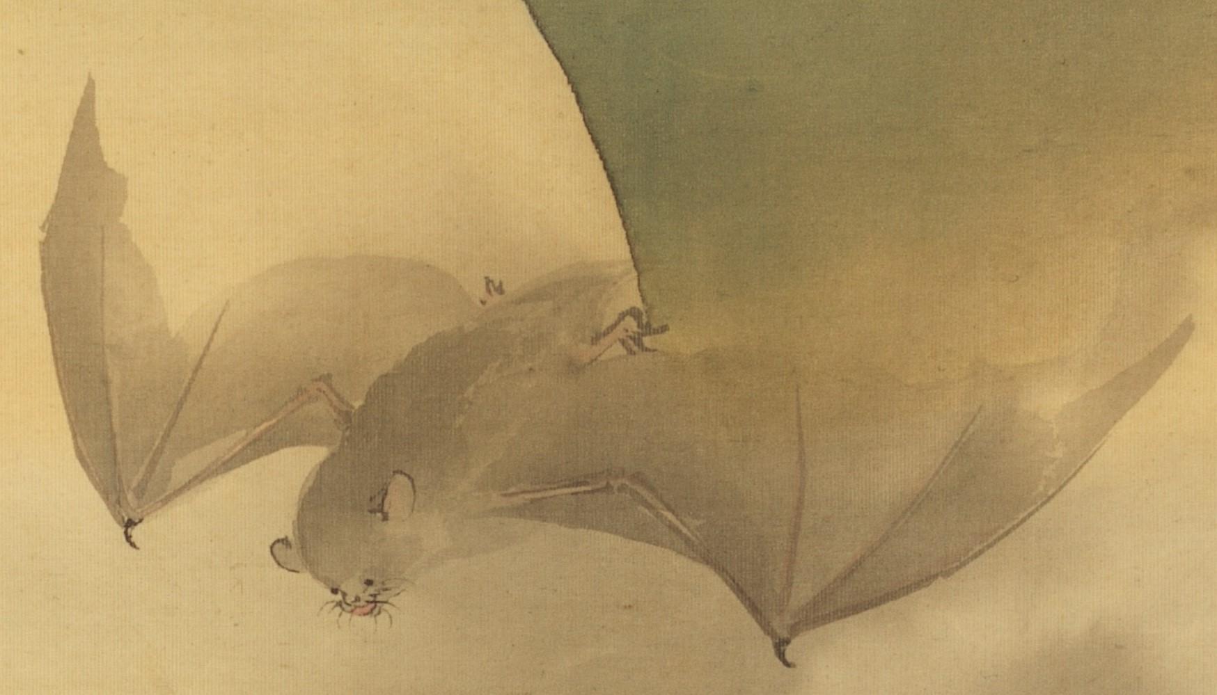 鈴木松年《月下蝙蝠図》 - コピー (2)